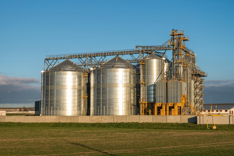 Silver silos on agro manufacturing plant for processing drying cleaning and storage of agricultural products, flour, cereals and royalty free stock image