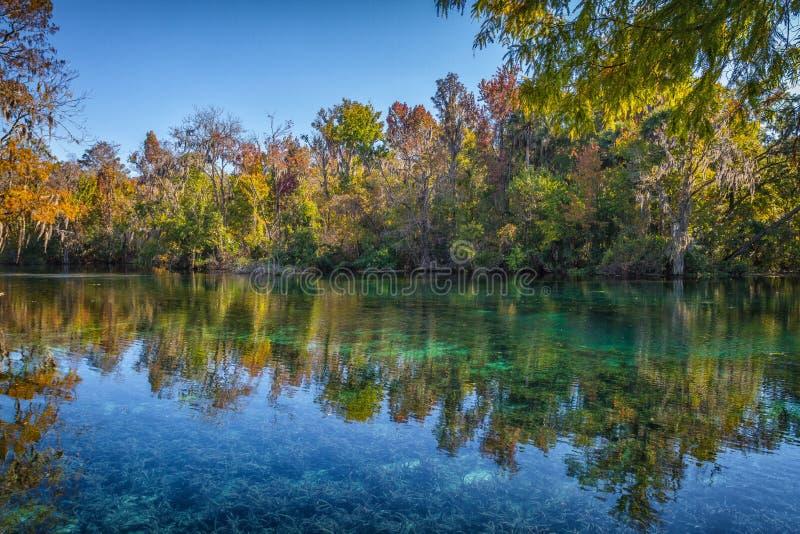 Silver Springs, Florida fotografia stock libera da diritti
