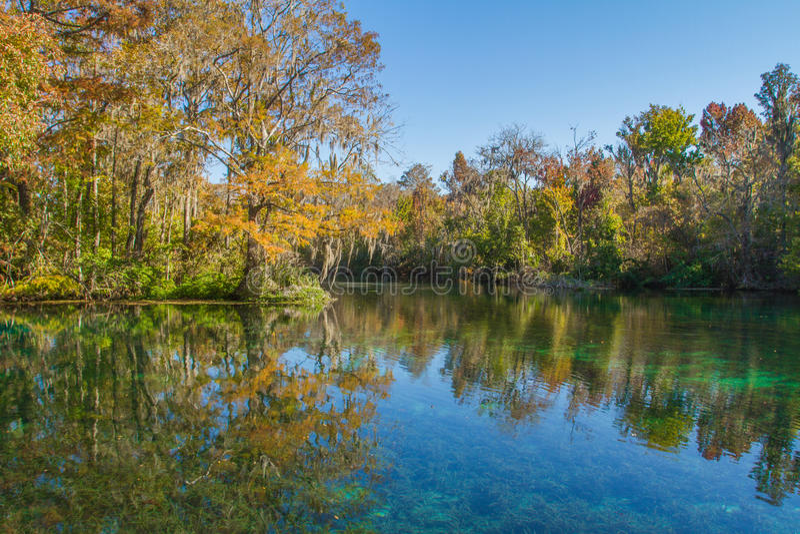 Silver Springs, Florida lizenzfreies stockbild