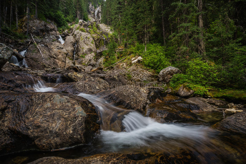 Silver Tip Falls, Wells Gray Provincial Park near Clearwater, Br royalty free stock images