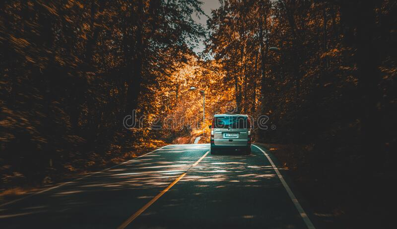 Silver Van Traveling on Highway Lined With Trees during Daytime royalty free stock image