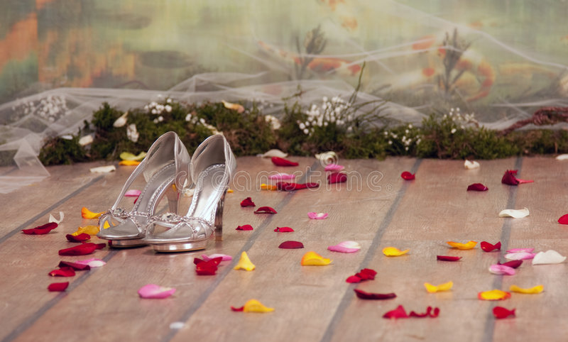 Download Silver Womans Shoes With Roses Petals Stock Image - Image: 8511735
