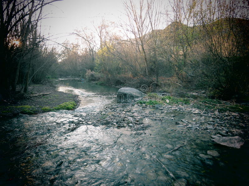 Silverflod 2 arkivbild