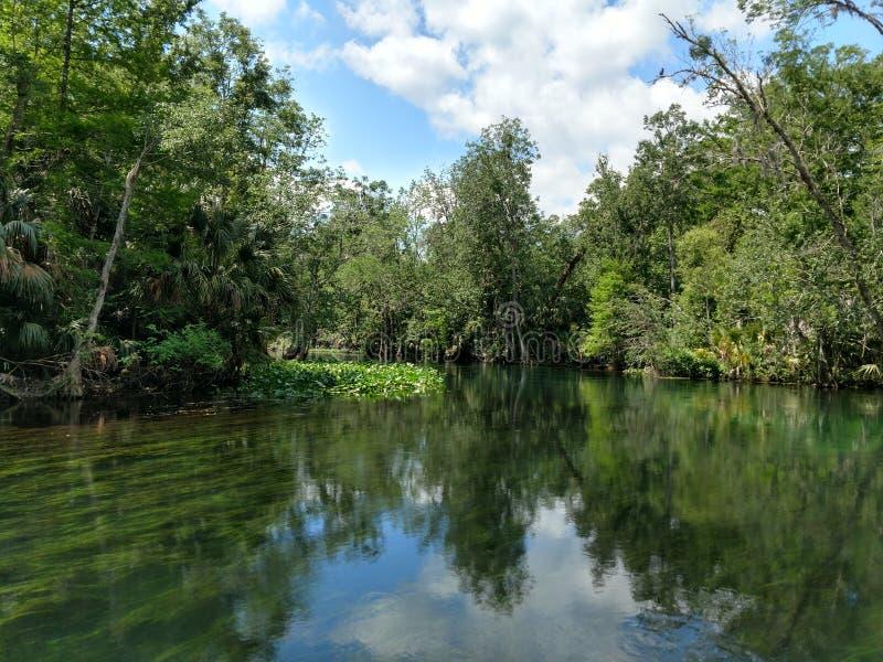Silverflod, Silver Springs, Florida arkivbilder
