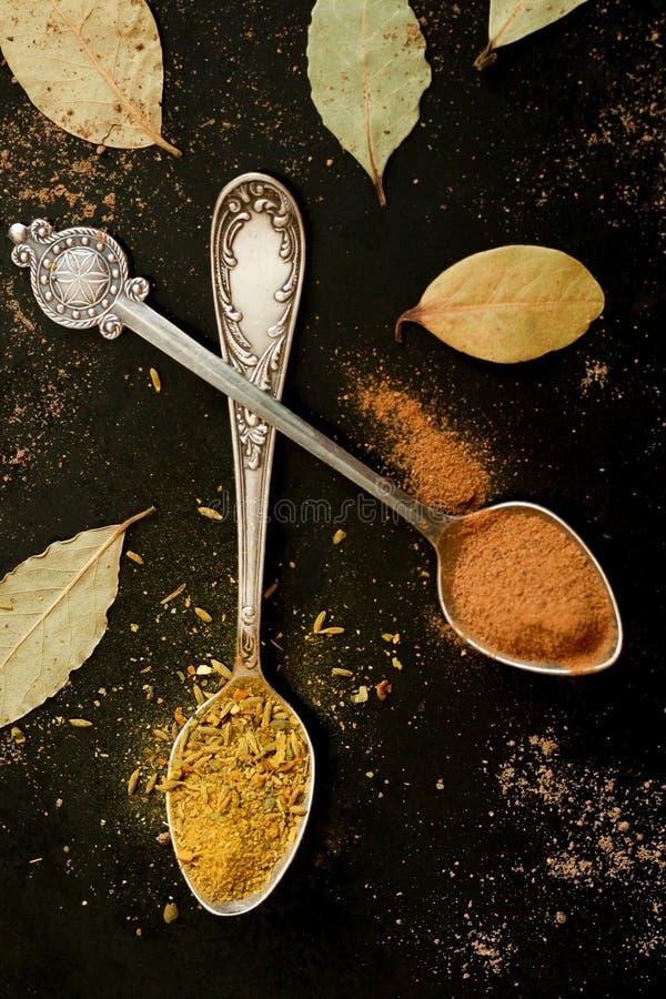 Silverskedar med kryddor royaltyfria bilder