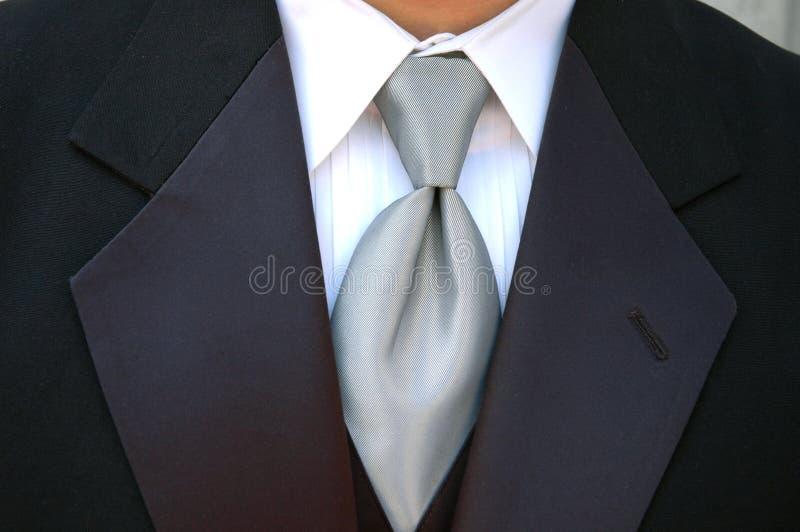 silvertietux royaltyfri fotografi