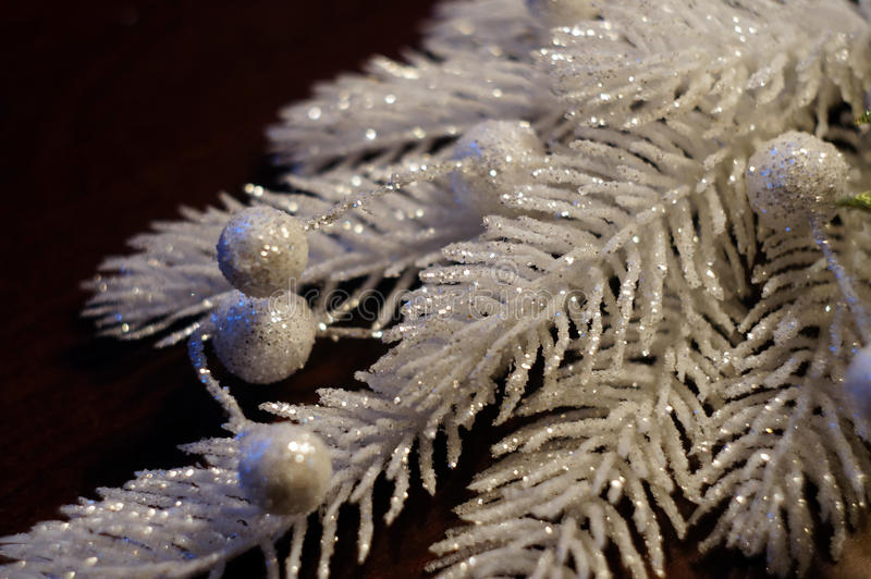 Silvery-white Decorative Christmas Branch Stock Photos