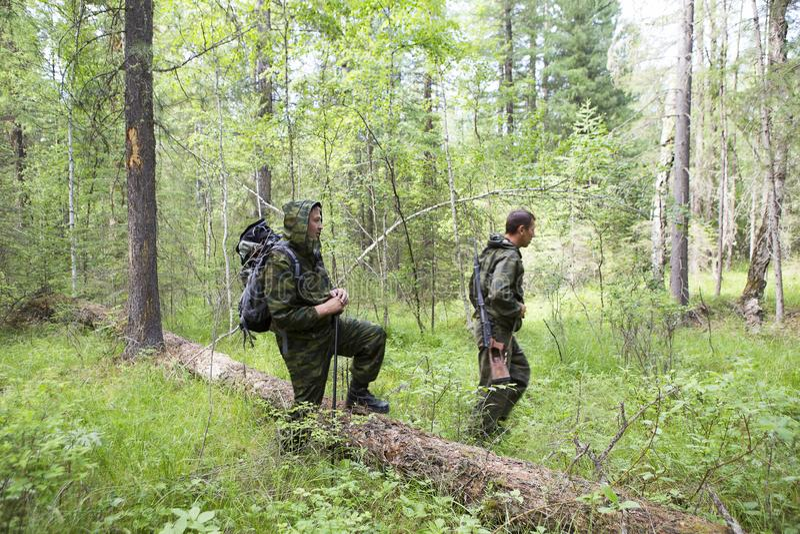 Silvicoltori che sorvegliano la foresta immagine stock