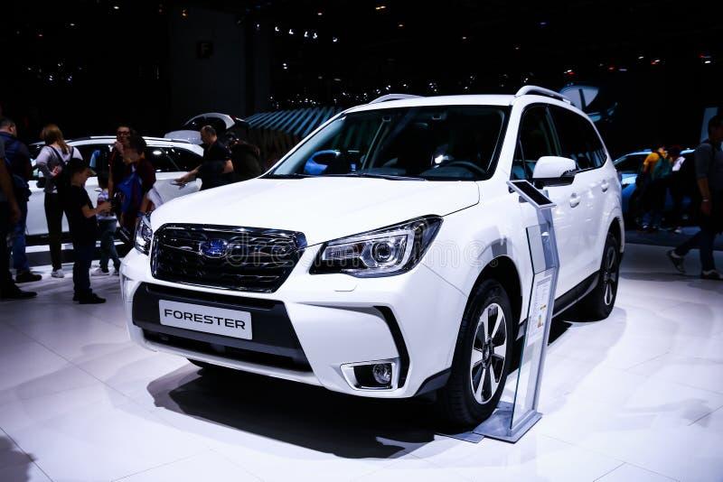 Silvicultor de Subaru foto de archivo libre de regalías