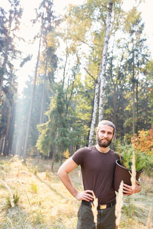 Silvicultor orgulloso con los almácigos del pino imagenes de archivo