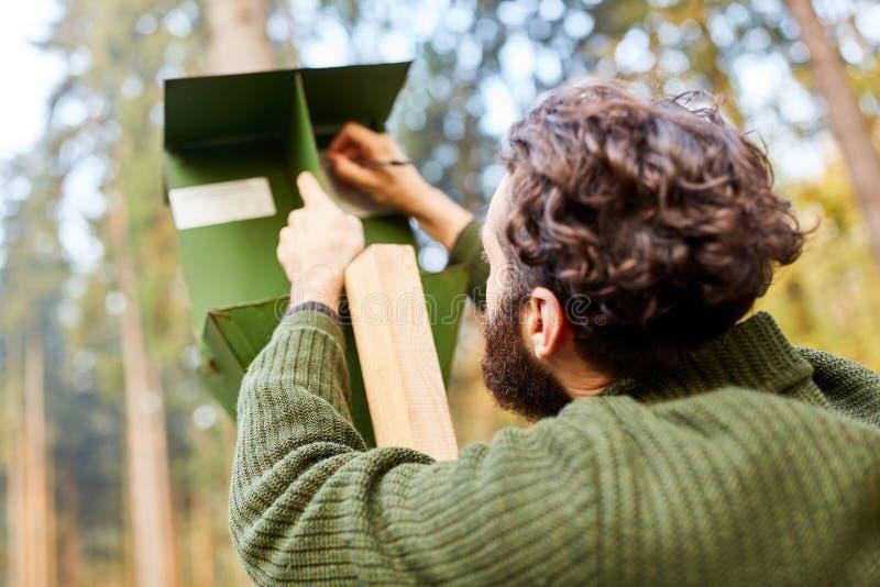 Silvicultor que comprueba una trampa del escarabajo de corteza foto de archivo libre de regalías
