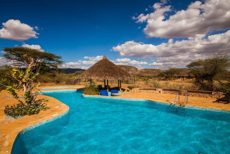 Simbassäng i afrikansk savannah kenya fotografering för bildbyråer
