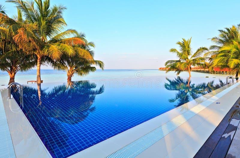Simbassäng i ett tropiskt hotell royaltyfri fotografi