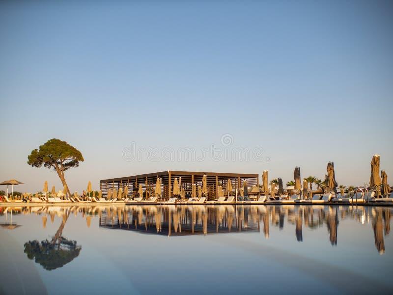 Simbassäng i lyxig semesterort eller hotell med sikt av kokospalmen och stranden under blå himmel fotografering för bildbyråer