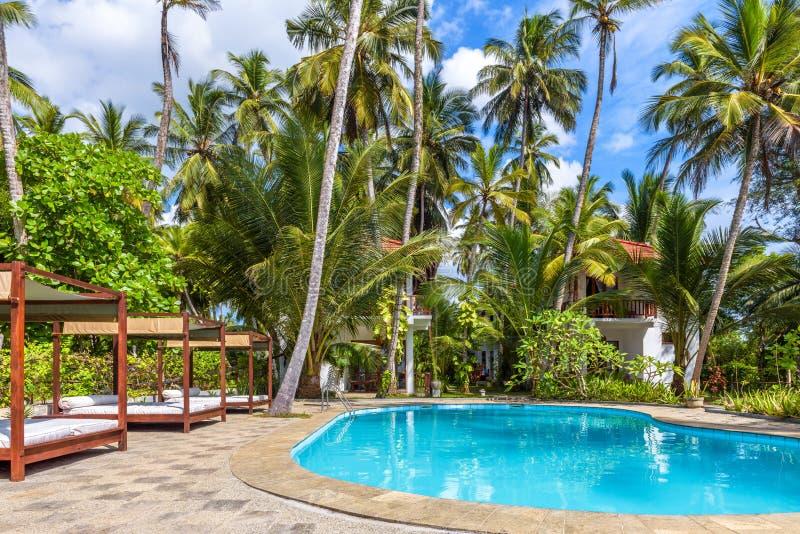 Simbassängen och stranden bäddar ned i ett tropiskt hotell arkivbilder