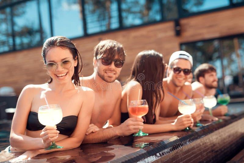 Simbassängparti Företaget av lyckliga vänner dricker coctaildrinkar i pöl på sommartid arkivbild
