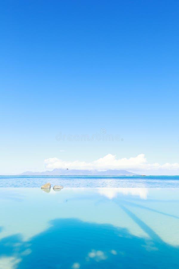 Simbassängsjösidasikt och blå himmel på platsen för solig dag med palmträdskugga på vattnet, vertikal sammansättning royaltyfri fotografi