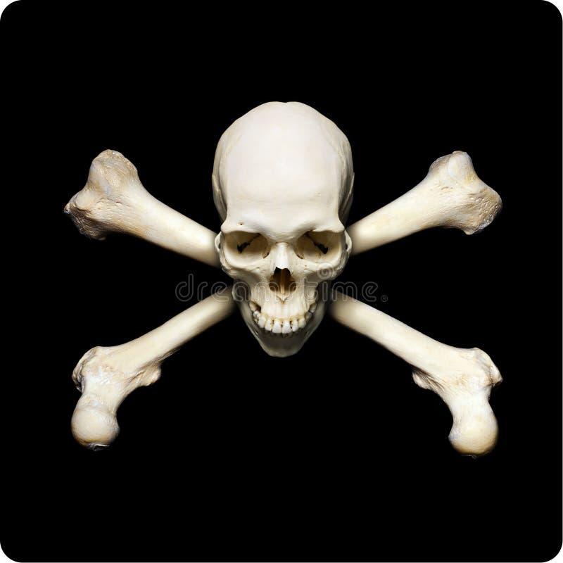 Simbol van de piraat stock foto