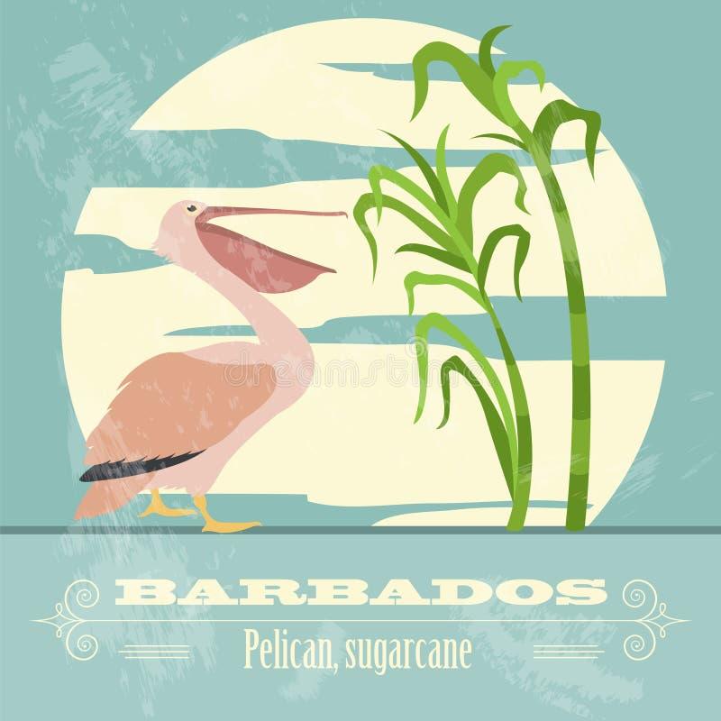 Simboli nazionali delle Barbados Pellicano, canna da zucchero Retro imag disegnato illustrazione vettoriale
