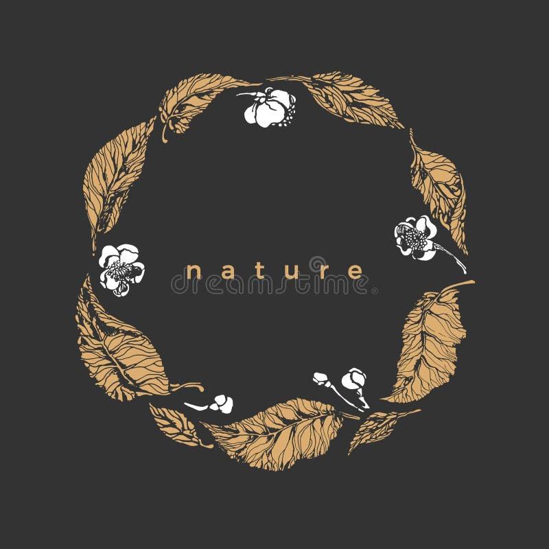 Simbolo della natura di vettore Corona botanica Foglie, fiore del cespuglio del tè illustrazione vettoriale