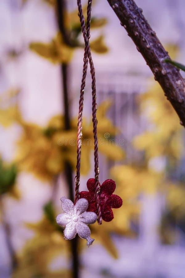 Simbolo della primavera Fiori rumeni di Martisor di simbolo di primavera immagine stock