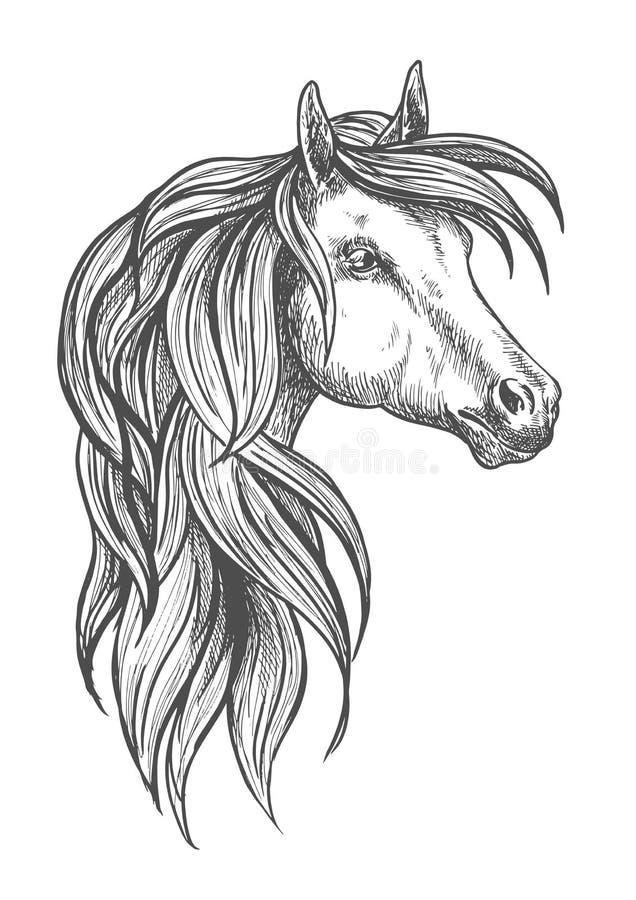 Simbolo di schizzo del cavallo di Morgan della cavalleria illustrazione vettoriale