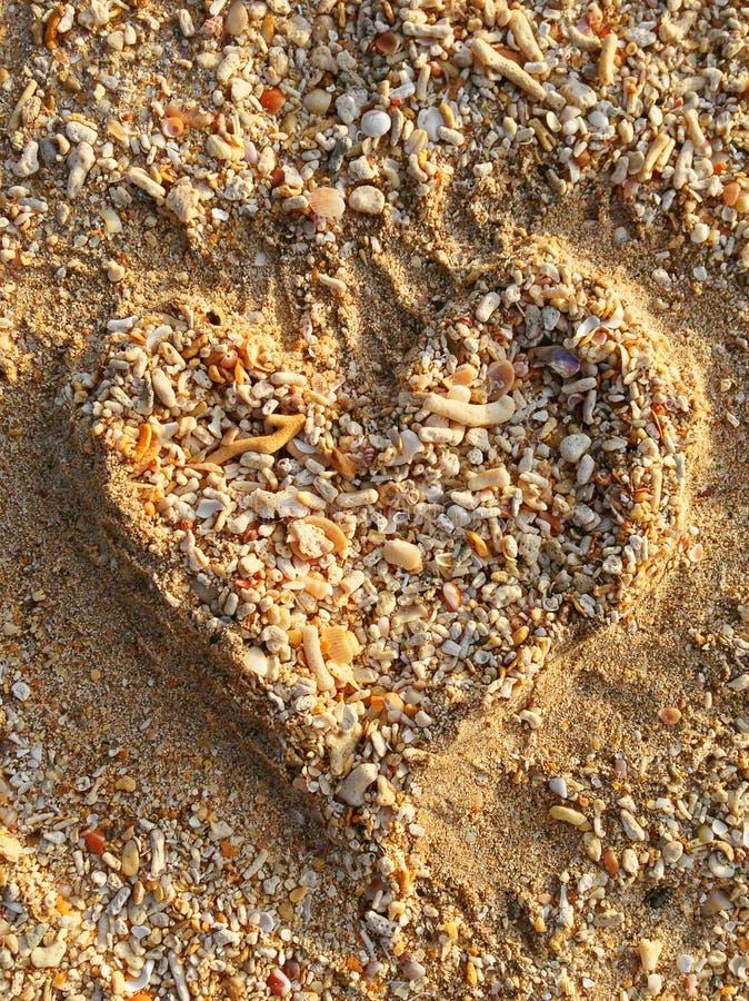 Simbolo disegnato a mano del cuore sulla sabbia e sulle piccole conchiglie, coralli immagine stock