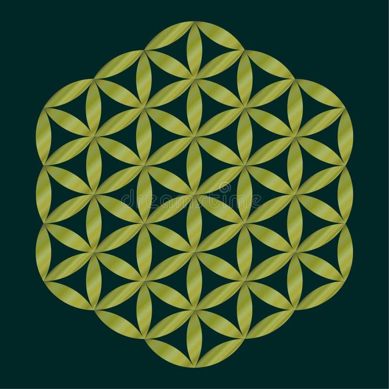 Simbolo sacro della geometria, fiore dorato di vita per alchemia, spiritualità, religione, filosofia, emblema di astrologia o eti illustrazione di stock