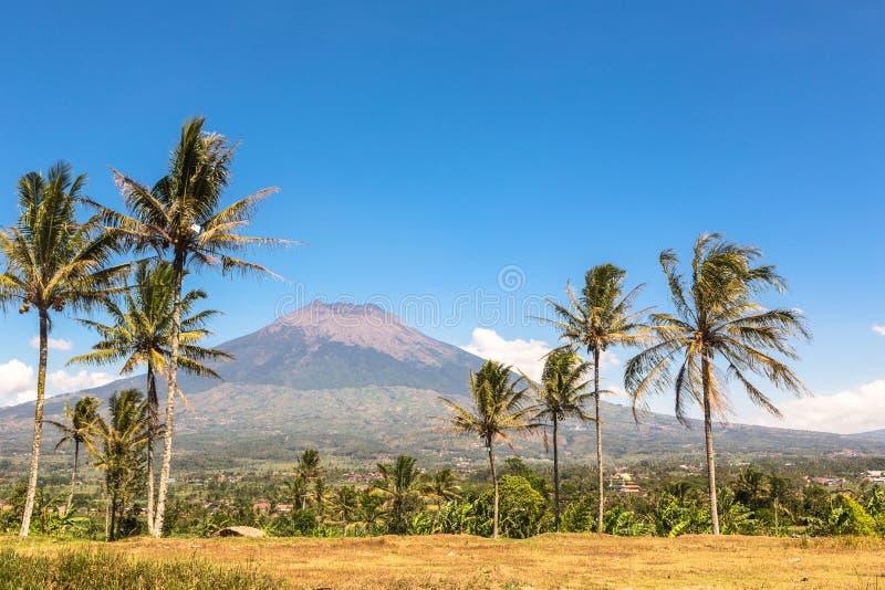 Simbungvulkaan in Java in Indonesië royalty-vrije stock foto