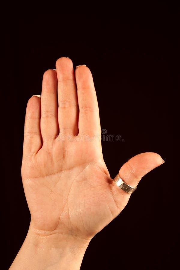 simian för veckhandhöger sida royaltyfri fotografi