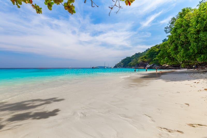 Similan wysp Piękna tropikalna piaskowata plaża i bujny zielony ulistnienie na tropikalnej wyspie, Thailand obraz stock