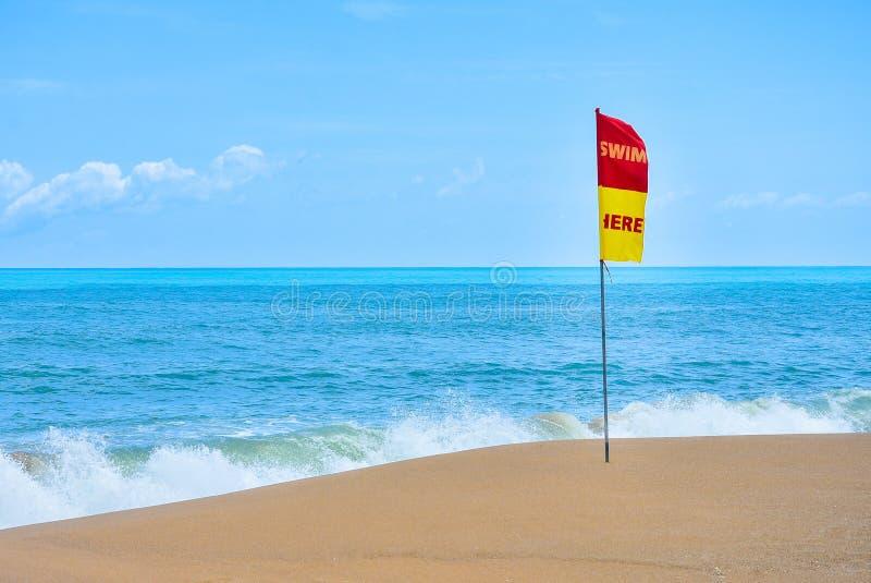 Simma här, säkerhetsflaggan på havsstranden Sjunka med text som simmar här på stranden badzon för säkerhet Säkerhetszon för att s arkivbild