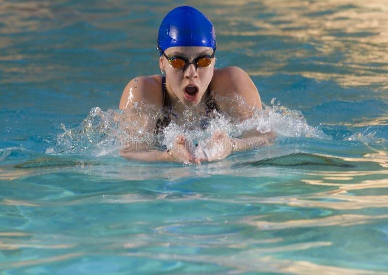 simmare för 3 kvinnlig royaltyfri foto