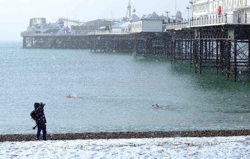 Simmare i Brighton Beach snö arkivfoto