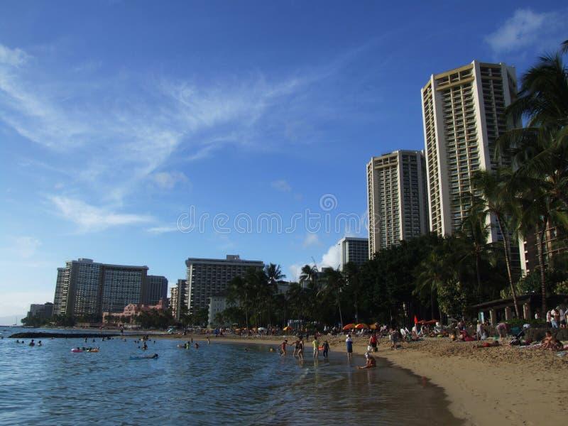 Simmare på den Waikiki stranden arkivfoton