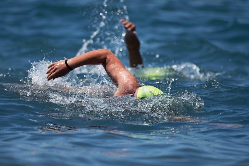 Simmare som simmar krypande i det blåa havet arkivbilder