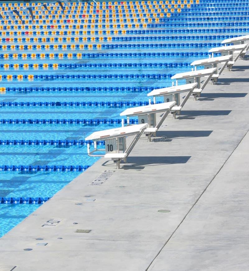 simning för 4 pöl royaltyfri fotografi