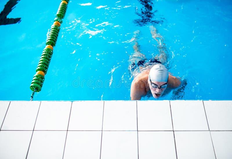 Simning för hög man i en inomhus simbassäng royaltyfri bild