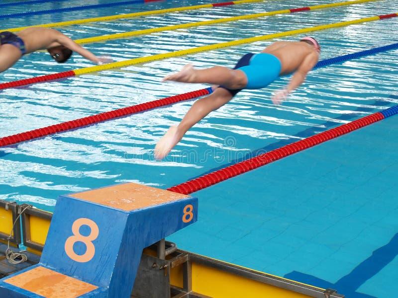 Simningkonkurrens, två simmare hoppade från startpunkt in i simbassäng arkivfoton