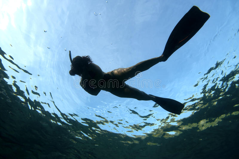 simningkvinna arkivfoton
