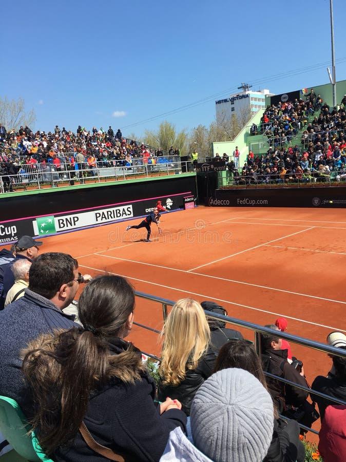 Simona Halep que juega en Fed Cup fotos de archivo