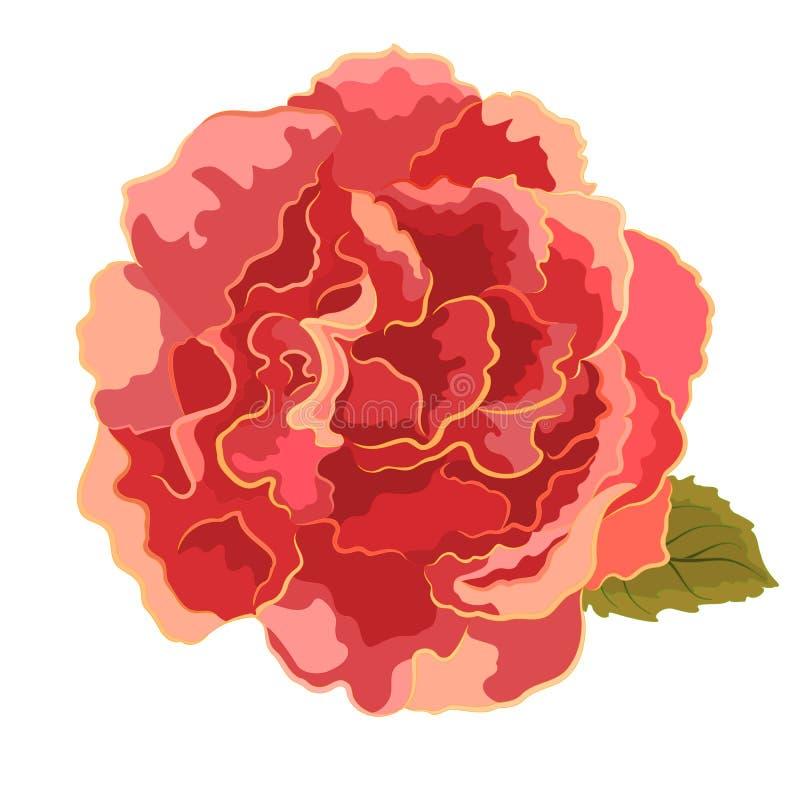 Simple anaranjado de las rosas ilustración del vector