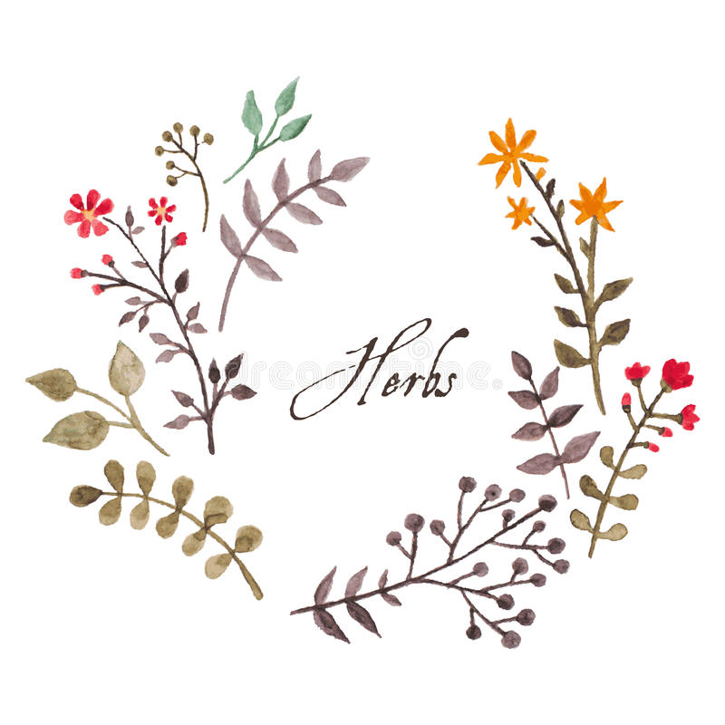 Free Simple And Cute Floral Oval Wreath Royalty Free Stock Images - 49461299