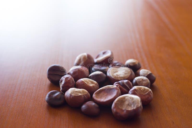 Autumn photo showing fresh chestnuts stock image
