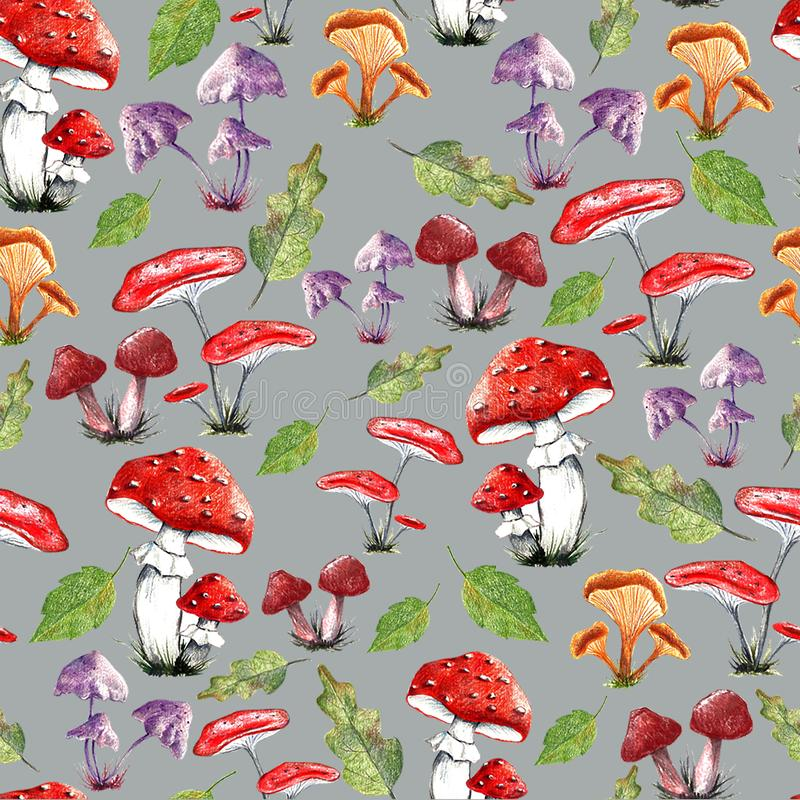 An autumn pattern vector illustration