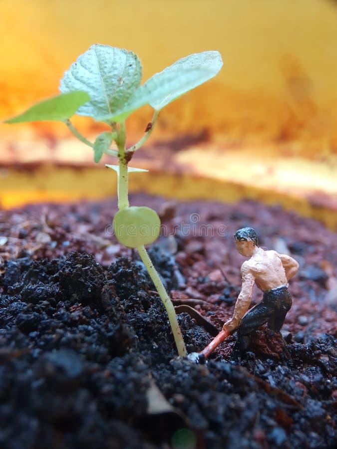 Simple Conceptual Illustration, Mini Figure man farming at limited area stock images