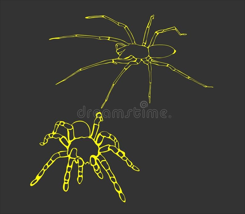 Simple Draw spider Line Art royalty free stock photos