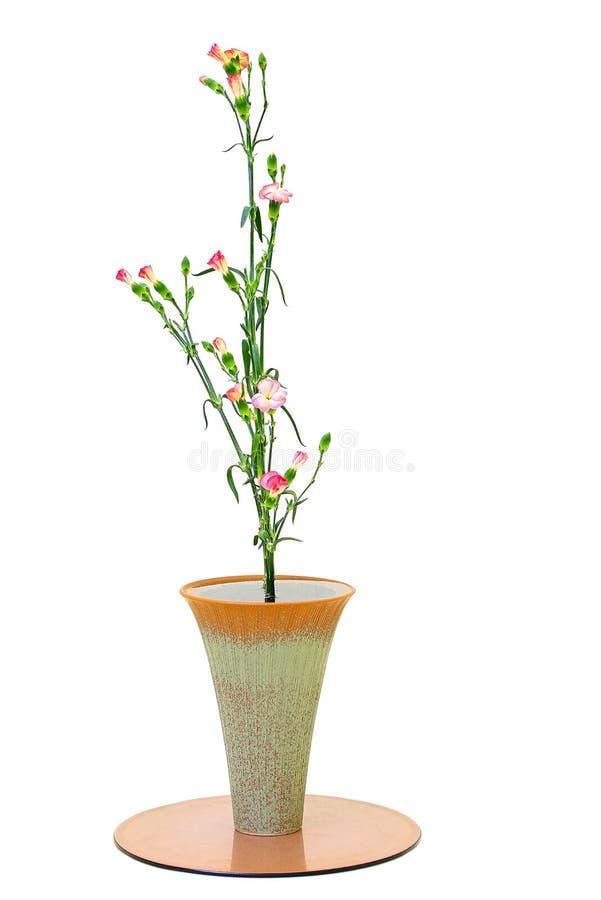Beautiful carnation roses arranged in a elegant vase royalty free stock image