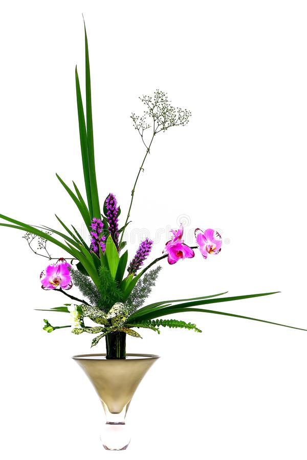Beautiful pink orchids and green plants arranged in a elegant vase royalty free stock image