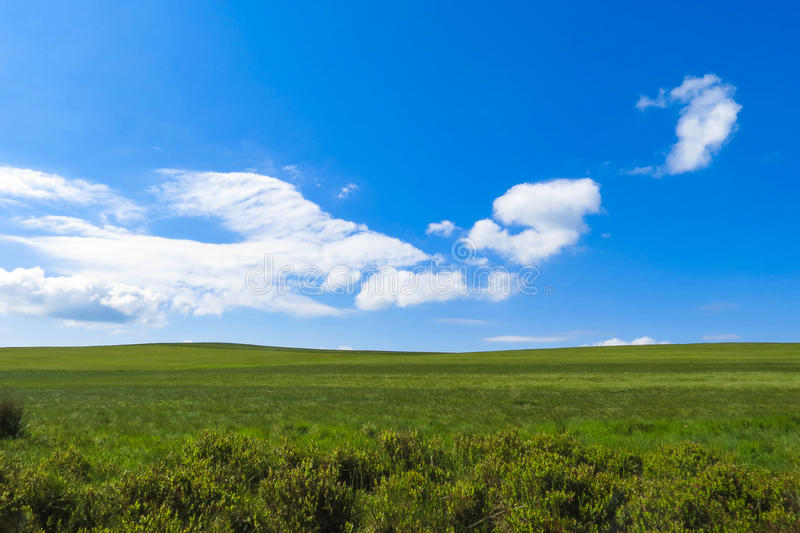 Simple English landscape for backgrounds. Simple English landscape with grassland and blue sky with white clouds for backgrounds stock photography